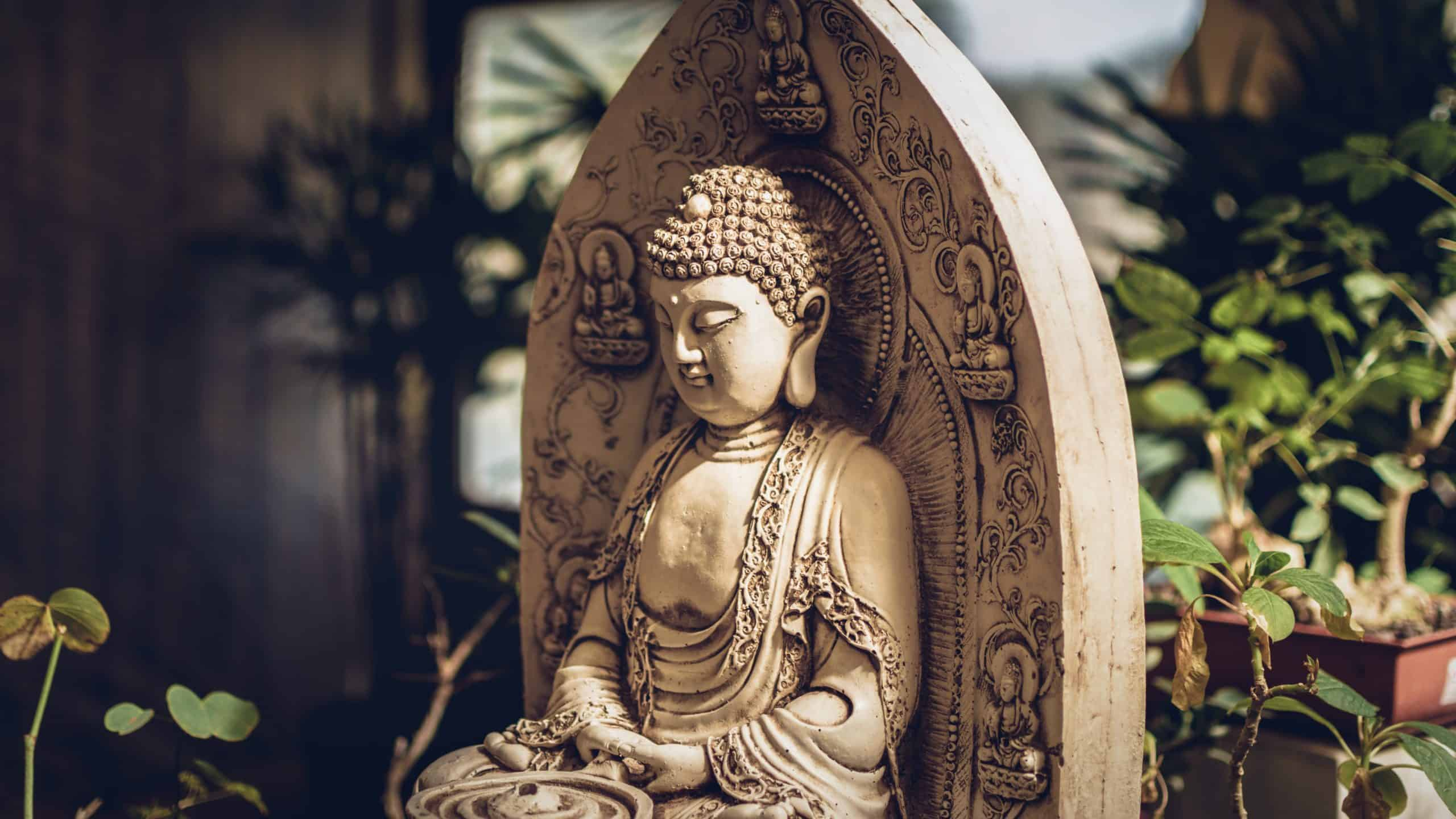 Buddhism: The Truth About Religion